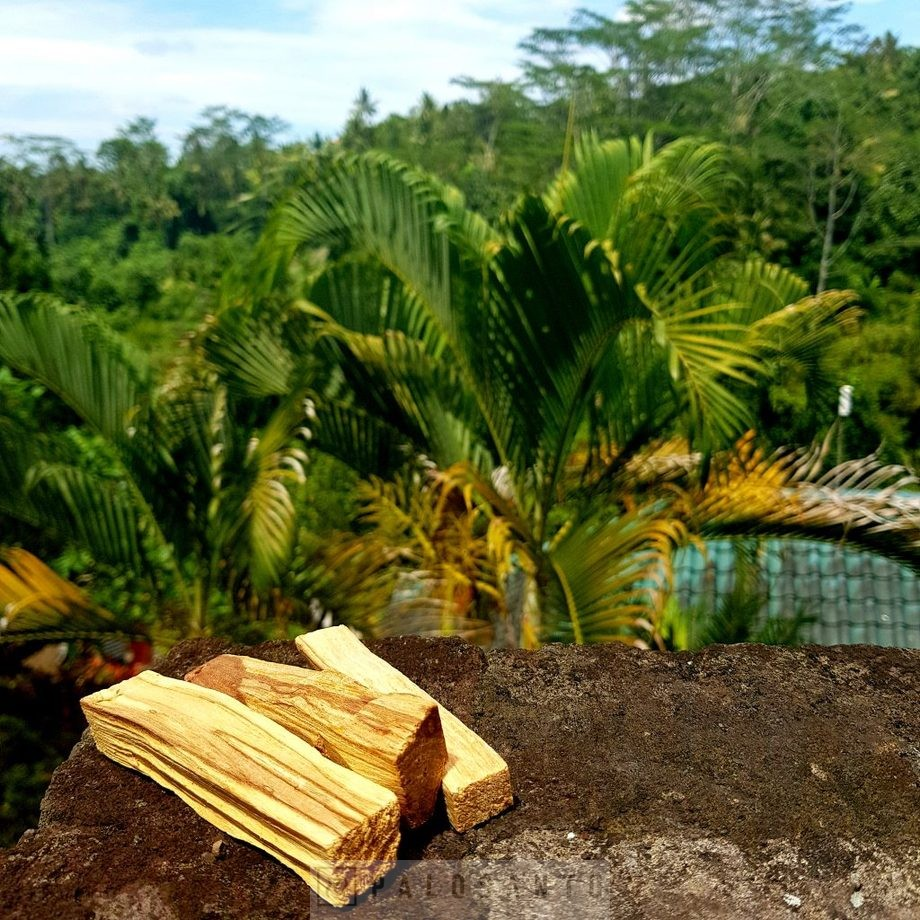 пало санто благовония на Бали