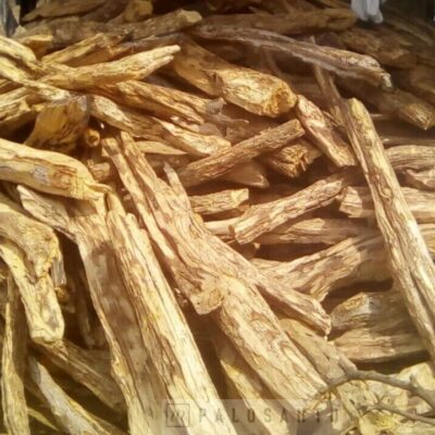 стволы деревьев пало санто для заготовки палочек